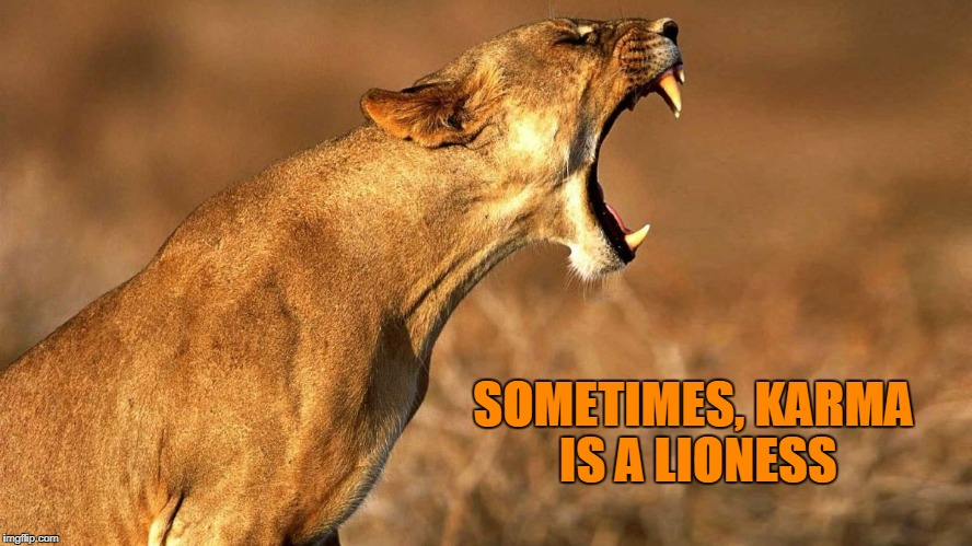 SOMETIMES, KARMA IS A LIONESS | image tagged in lioness roaring,karma,karma's a bitch | made w/ Imgflip meme maker