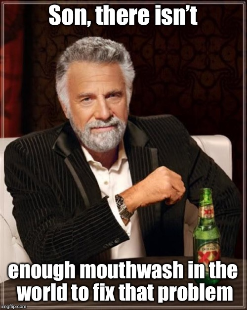 The Most Interesting Man In The World Meme | Son, there isn't enough mouthwash in the world to fix that problem | image tagged in memes,the most interesting man in the world | made w/ Imgflip meme maker