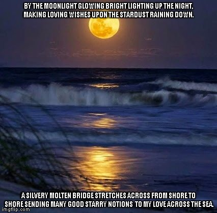 By the Moonlight | BY THE MOONLIGHT GLOWING BRIGHT LIGHTING UP THE NIGHT, MAKING LOVING WISHES UPON THE STARDUST RAINING DOWN. A SILVERY MOLTEN BRIDGE STRETCHE | image tagged in moonlight,love,wishes,the sea | made w/ Imgflip meme maker