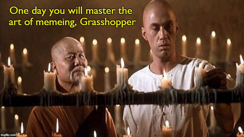 One day you will master the art of memeing, Grasshopper | made w/ Imgflip meme maker