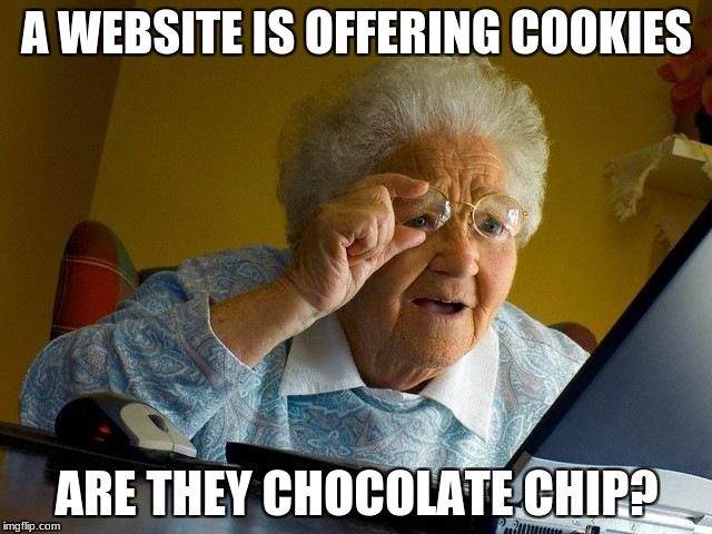 Grandma Finds The Internet Meme | A WEBSITE IS OFFERING COOKIES ARE THEY CHOCOLATE CHIP? | image tagged in memes,grandma finds the internet | made w/ Imgflip meme maker