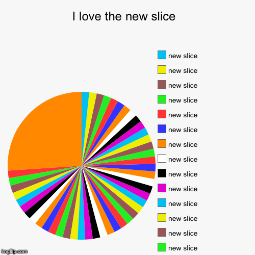 I love the new slice  | | image tagged in funny,pie charts | made w/ Imgflip pie chart maker