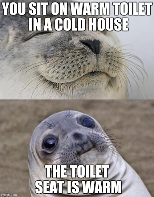 someone was recently there | YOU SIT ON WARM TOILET IN A COLD HOUSE THE TOILET SEAT IS WARM | image tagged in memes,short satisfaction vs truth | made w/ Imgflip meme maker