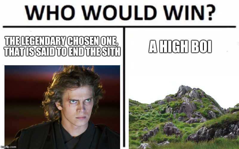 Who Would Win? Meme | THE LEGENDARY CHOSEN ONE, THAT IS SAID TO END THE SITH A HIGH BOI | image tagged in memes,who would win | made w/ Imgflip meme maker