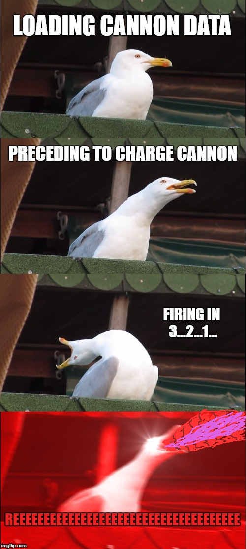I'ma firing mah LAZOR!!! Seagull Edition | LOADING CANNON DATA PRECEDING TO CHARGE CANNON FIRING IN 3...2...1... REEEEEEEEEEEEEEEEEEEEEEEEEEEEEEEEEEEEE | image tagged in memes,inhaling seagull | made w/ Imgflip meme maker