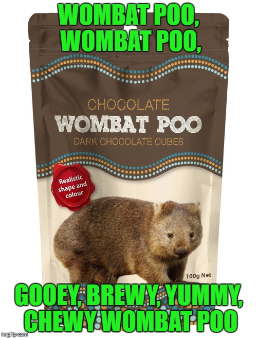 Wombat Poo | WOMBAT POO, WOMBAT POO, GOOEY, BREWY, YUMMY, CHEWY WOMBAT POO | image tagged in memes,wombat stew,wombat,poo,chocolate | made w/ Imgflip meme maker