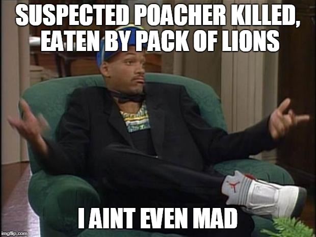 Fresh Prince  | SUSPECTED POACHER KILLED, EATEN BY PACK OF LIONS I AINT EVEN MAD | image tagged in fresh prince | made w/ Imgflip meme maker