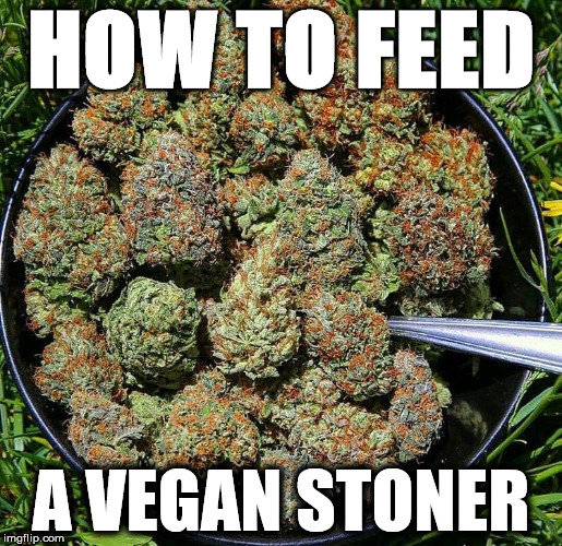 How to feed a vegan | HOW TO FEED A VEGAN STONER | image tagged in vegan4life,stoner,memes,funny memes | made w/ Imgflip meme maker