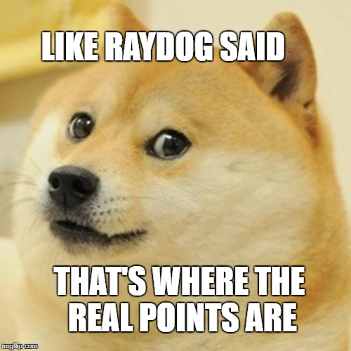 Doge Meme | LIKE RAYDOG SAID THAT'S WHERE THE REAL POINTS ARE | image tagged in memes,doge | made w/ Imgflip meme maker