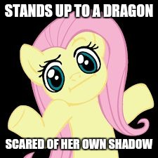 Fluttershy's mezmerizing personality is really  something | STANDS UP TO A DRAGON SCARED OF HER OWN SHADOW | image tagged in fluttershy shrugs,memes,fluttershy,dragon,shadow,scared | made w/ Imgflip meme maker