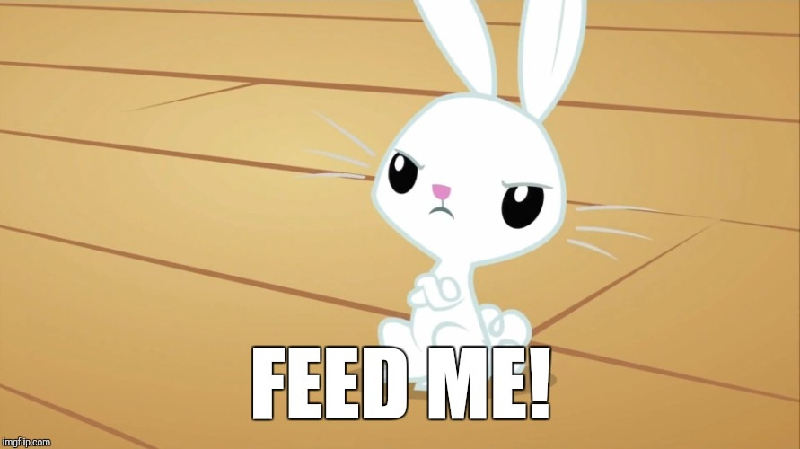 Don't make Angel Bunny mad! | FEED ME! | image tagged in memes,fluttershy,angel bunny,my little pony | made w/ Imgflip meme maker