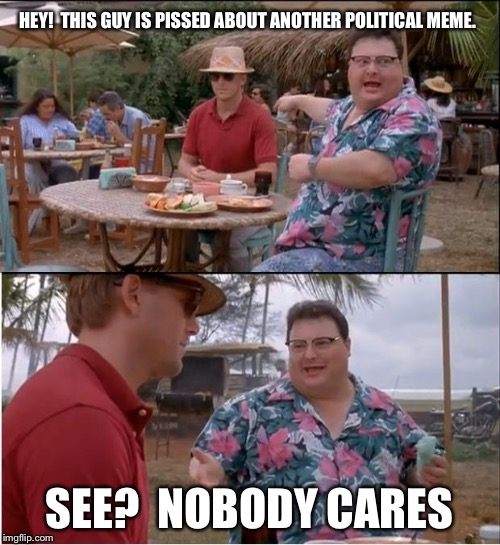 See Nobody Cares Meme | HEY!  THIS GUY IS PISSED ABOUT ANOTHER POLITICAL MEME. SEE?  NOBODY CARES | image tagged in memes,see nobody cares | made w/ Imgflip meme maker