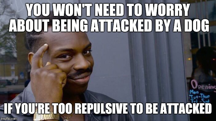 Roll Safe Think About It Meme | YOU WON'T NEED TO WORRY ABOUT BEING ATTACKED BY A DOG IF YOU'RE TOO REPULSIVE TO BE ATTACKED | image tagged in memes,roll safe think about it | made w/ Imgflip meme maker