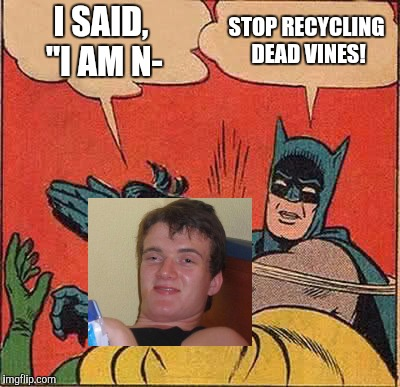 "Batman Slapping Robin Meme | I SAID, ""I AM N- STOP RECYCLING DEAD VINES! 