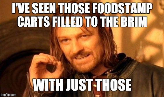 One Does Not Simply Meme | I'VE SEEN THOSE FOODSTAMP CARTS FILLED TO THE BRIM WITH JUST THOSE | image tagged in memes,one does not simply | made w/ Imgflip meme maker