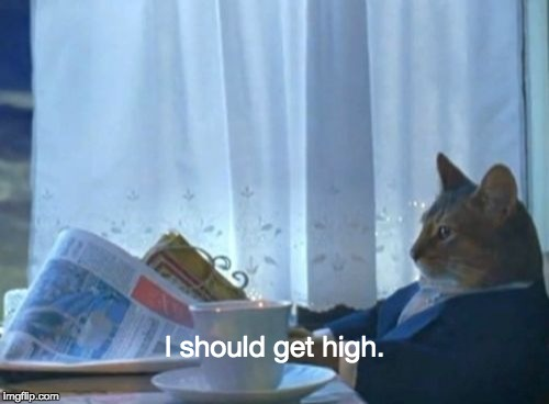 I Should Buy A Boat Cat Meme | I should get high. | image tagged in memes,i should buy a boat cat | made w/ Imgflip meme maker