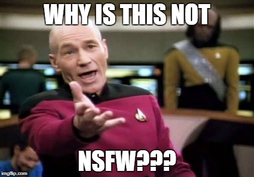 Picard Wtf Meme | WHY IS THIS NOT NSFW??? | image tagged in memes,picard wtf | made w/ Imgflip meme maker
