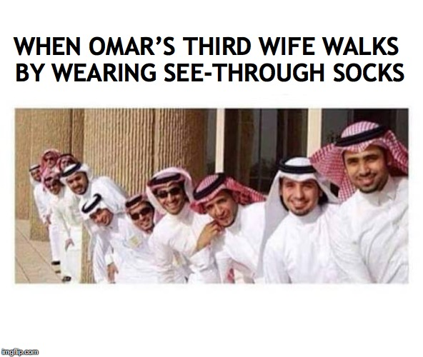 Bird-Watching In The Middle-East | WHEN OMAR'S THIRD WIFE WALKS BY WEARING SEE-THROUGH SOCKS | image tagged in sexy women,sexism,arabs | made w/ Imgflip meme maker