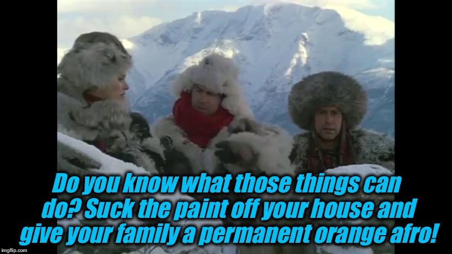 Do you know what those things can do? Suck the paint off your house and give your family a permanent orange afro! | made w/ Imgflip meme maker