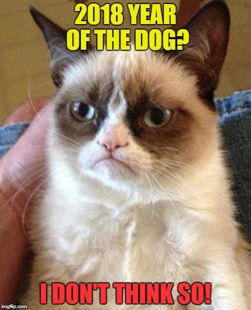Grumpy Chinese New Year | 2018 YEAR OF THE DOG? I DON'T THINK SO! | image tagged in memes,grumpy cat,new year | made w/ Imgflip meme maker