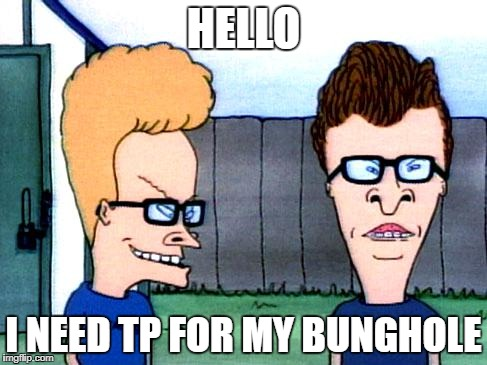 Smart beavis and Butt-head | HELLO I NEED TP FOR MY BUNGHOLE | image tagged in smart beavis and butt-head | made w/ Imgflip meme maker