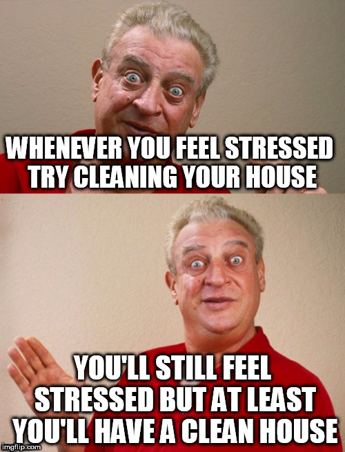 Classic Rodney | WHENEVER YOU FEEL STRESSED TRY CLEANING YOUR HOUSE YOU'LL STILL FEEL STRESSED BUT AT LEAST YOU'LL HAVE A CLEAN HOUSE | image tagged in classic rodney | made w/ Imgflip meme maker