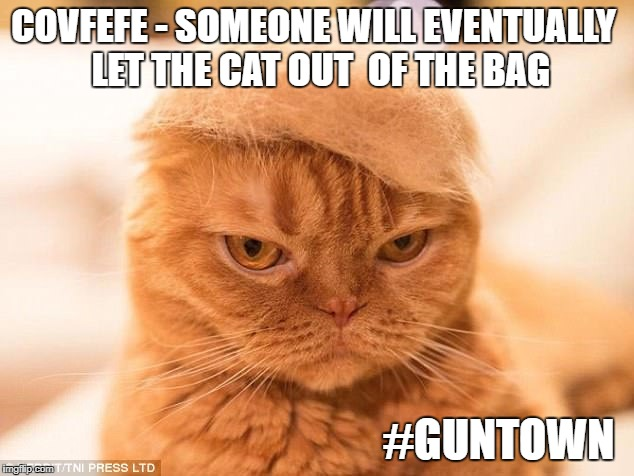 let the cat out of the bag | COVFEFE - SOMEONE WILL EVENTUALLY  LET THE CAT OUT  OF THE BAG #GUNTOWN | image tagged in donald trump cat | made w/ Imgflip meme maker