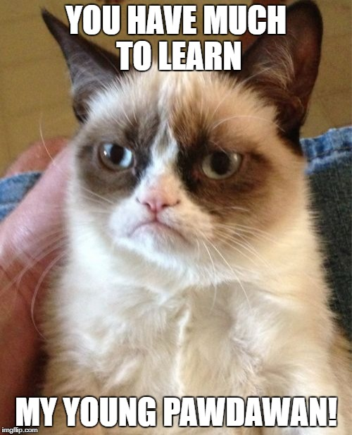 Grumpy Cat Meme | YOU HAVE MUCH TO LEARN MY YOUNG PAWDAWAN! | image tagged in memes,grumpy cat | made w/ Imgflip meme maker