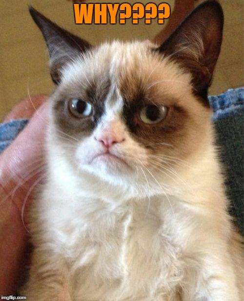 Grumpy Cat Meme | WHY???? | image tagged in memes,grumpy cat | made w/ Imgflip meme maker