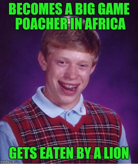 Lions - 1, Brian - 0! | BECOMES A BIG GAME POACHER IN AFRICA GETS EATEN BY A LION | image tagged in memes,bad luck brian,africa,hunting,animals | made w/ Imgflip meme maker