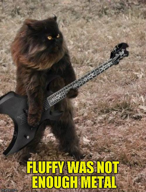 FLUFFY WAS NOT ENOUGH METAL | made w/ Imgflip meme maker