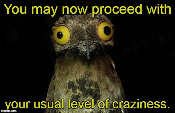 Weird Stuff I Do Potoo | You may now proceed with your usual level of craziness. | image tagged in memes,weird stuff i do potoo | made w/ Imgflip meme maker