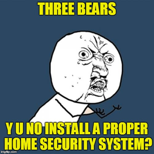 Y U No Meme | THREE BEARS Y U NO INSTALL A PROPER HOME SECURITY SYSTEM? | image tagged in memes,y u no | made w/ Imgflip meme maker
