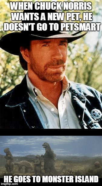 Chuck Norris | WHEN CHUCK NORRIS WANTS A NEW PET, HE DOESN'T GO TO PETSMART HE GOES TO MONSTER ISLAND | image tagged in chuck norris,godzilla | made w/ Imgflip meme maker