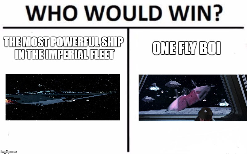 Who Would Win? Meme | THE MOST POWERFUL SHIP IN THE IMPERIAL FLEET ONE FLY BOI | image tagged in memes,who would win | made w/ Imgflip meme maker