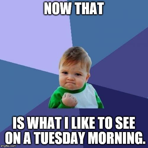 Success Kid Meme | NOW THAT IS WHAT I LIKE TO SEE ON A TUESDAY MORNING. | image tagged in memes,success kid | made w/ Imgflip meme maker
