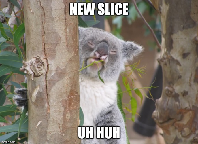 Staring Koala | NEW SLICE UH HUH | image tagged in staring koala | made w/ Imgflip meme maker