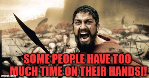 Sparta Leonidas Meme | SOME PEOPLE HAVE TOO MUCH TIME ON THEIR HANDS!! | image tagged in memes,sparta leonidas | made w/ Imgflip meme maker