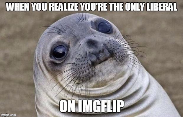 Awkward Moment Sealion Meme | WHEN YOU REALIZE YOU'RE THE ONLY LIBERAL ON IMGFLIP | image tagged in memes,awkward moment sealion | made w/ Imgflip meme maker
