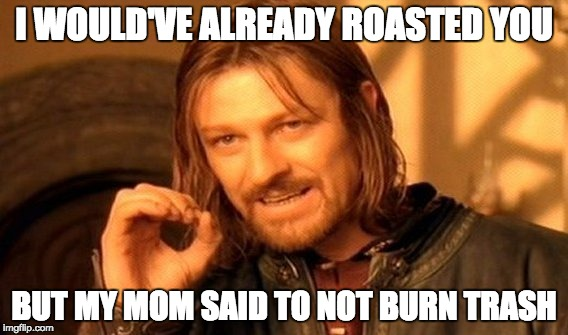 One Does Not Simply Meme | I WOULD'VE ALREADY ROASTED YOU BUT MY MOM SAID TO NOT BURN TRASH | image tagged in memes,one does not simply | made w/ Imgflip meme maker