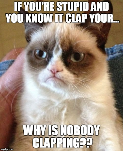 Grumpy Cat Meme | IF YOU'RE STUPID AND YOU KNOW IT CLAP YOUR... WHY IS NOBODY CLAPPING?? | image tagged in memes,grumpy cat | made w/ Imgflip meme maker