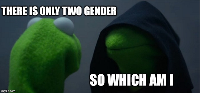 Evil Kermit Meme | THERE IS ONLY TWO GENDER SO WHICH AM I | image tagged in memes,evil kermit | made w/ Imgflip meme maker