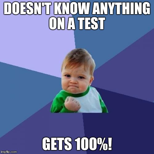 Success Kid Meme | DOESN'T KNOW ANYTHING ON A TEST GETS 100%! | image tagged in memes,success kid | made w/ Imgflip meme maker