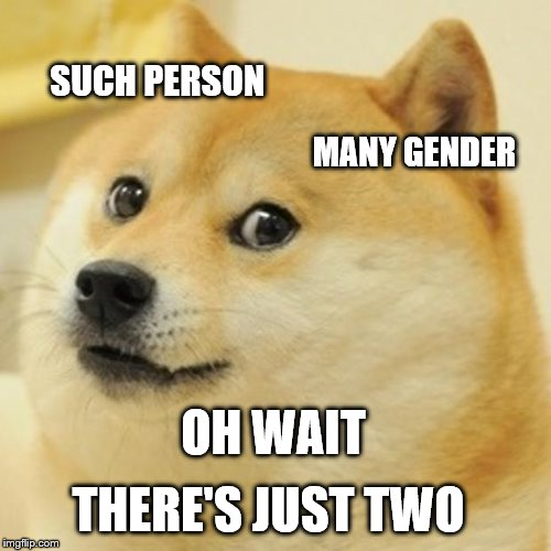 Doge Meme | SUCH PERSON MANY GENDER OH WAIT THERE'S JUST TWO | image tagged in memes,doge | made w/ Imgflip meme maker
