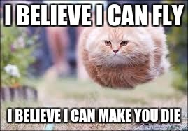 flying cat ball | I BELIEVE I CAN FLY I BELIEVE I CAN MAKE YOU DIE | image tagged in flying cat ball | made w/ Imgflip meme maker