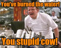 You've burned the water! You stupid cow! | made w/ Imgflip meme maker