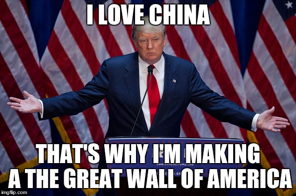 Donald Trump | I LOVE CHINA THAT'S WHY I'M MAKING A THE GREAT WALL OF AMERICA | image tagged in donald trump | made w/ Imgflip meme maker