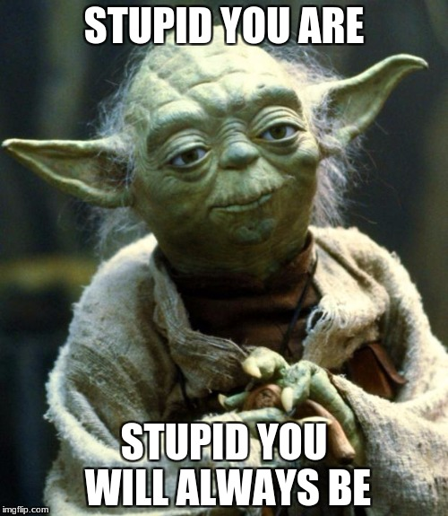 Star Wars Yoda | STUPID YOU ARE STUPID YOU WILL ALWAYS BE | image tagged in memes,star wars yoda,yoda,funny | made w/ Imgflip meme maker