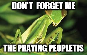 DON'T  FORGET ME THE PRAYING PEOPLETIS | made w/ Imgflip meme maker