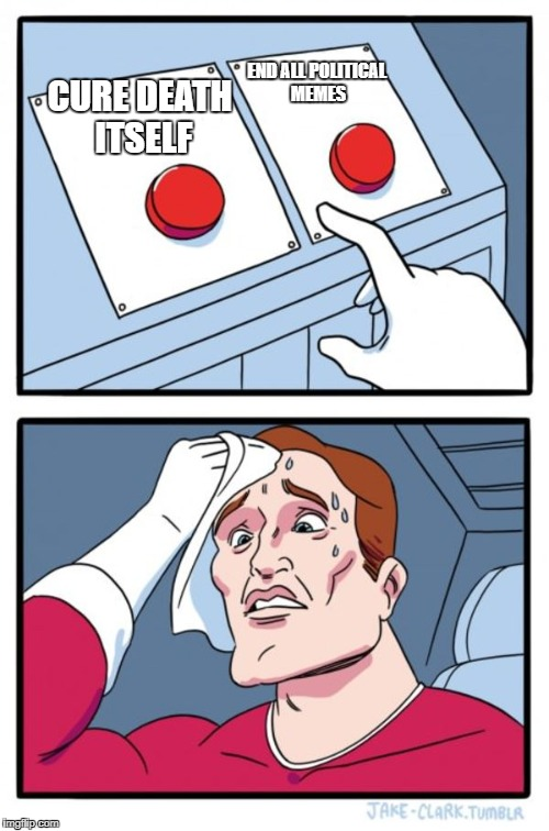 Two Buttons Meme | CURE DEATH ITSELF END ALL POLITICAL MEMES | image tagged in memes,two buttons | made w/ Imgflip meme maker